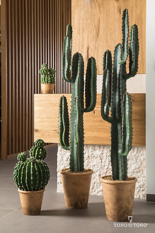 Prickly trend