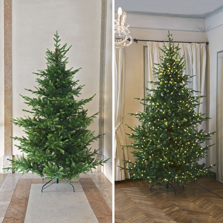 The best Christmas trees for 2020